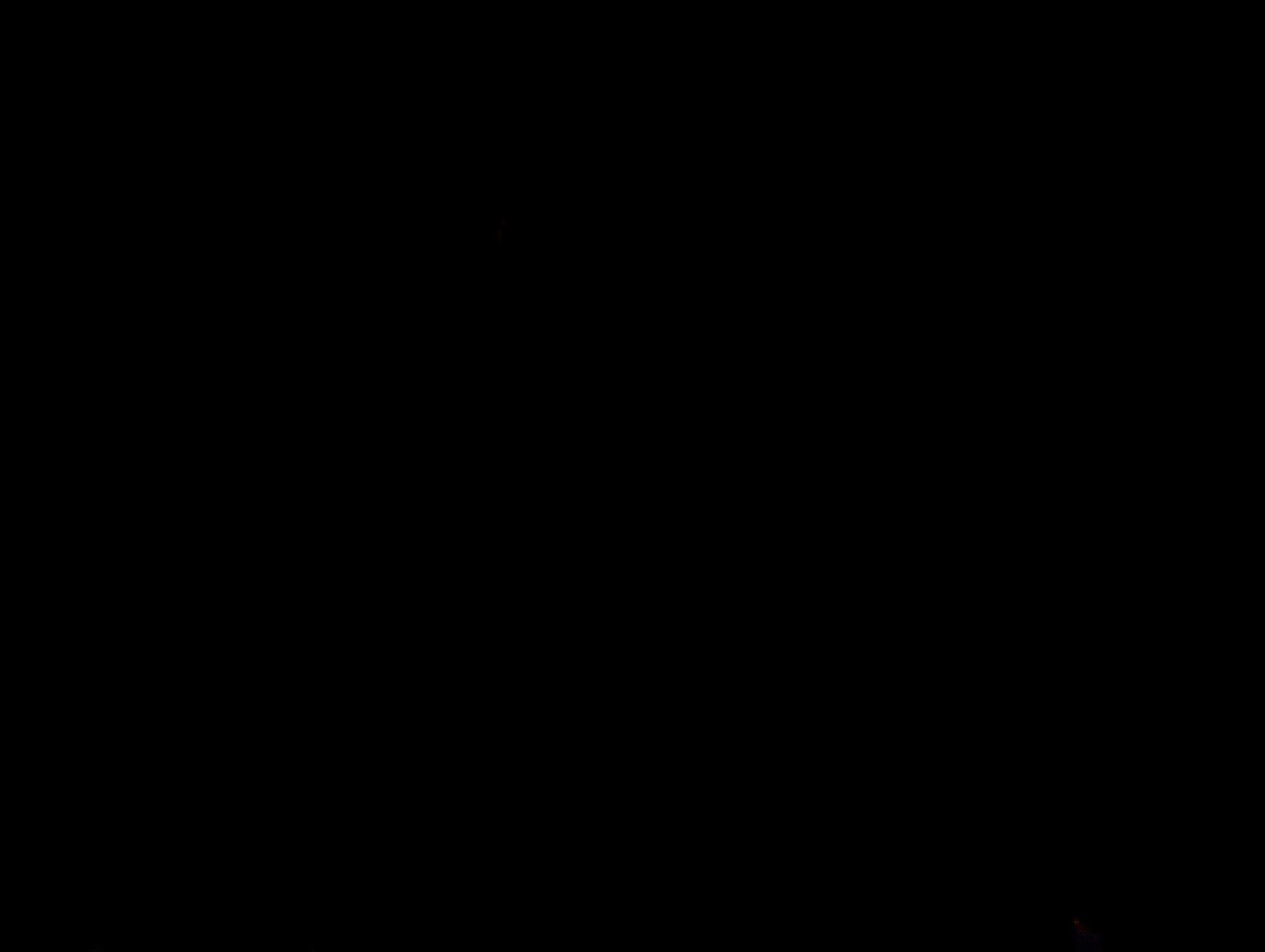 20210204_073434.jpg