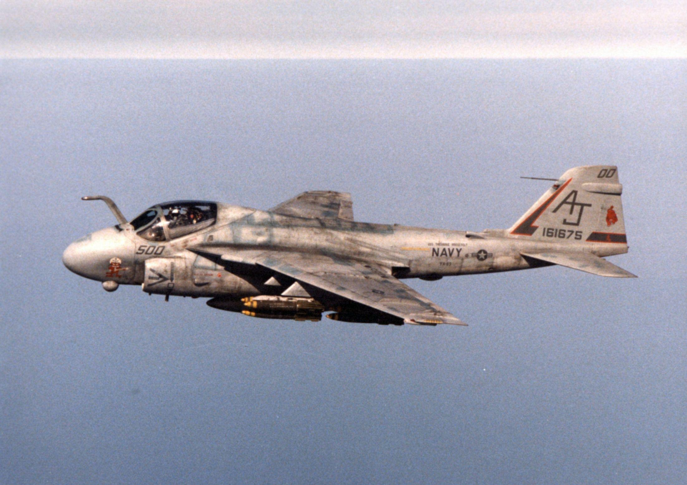 A-6E_VA-65_during_1991_Gulf_War.jpeg