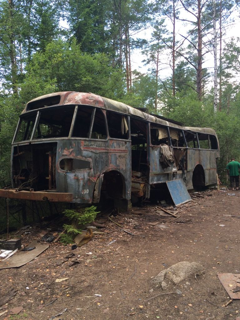 Buss i skogen.jpg