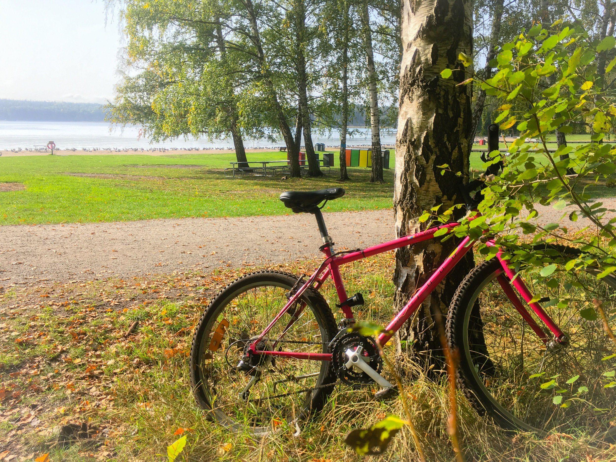 cykel-20200928-grimsta.jpg
