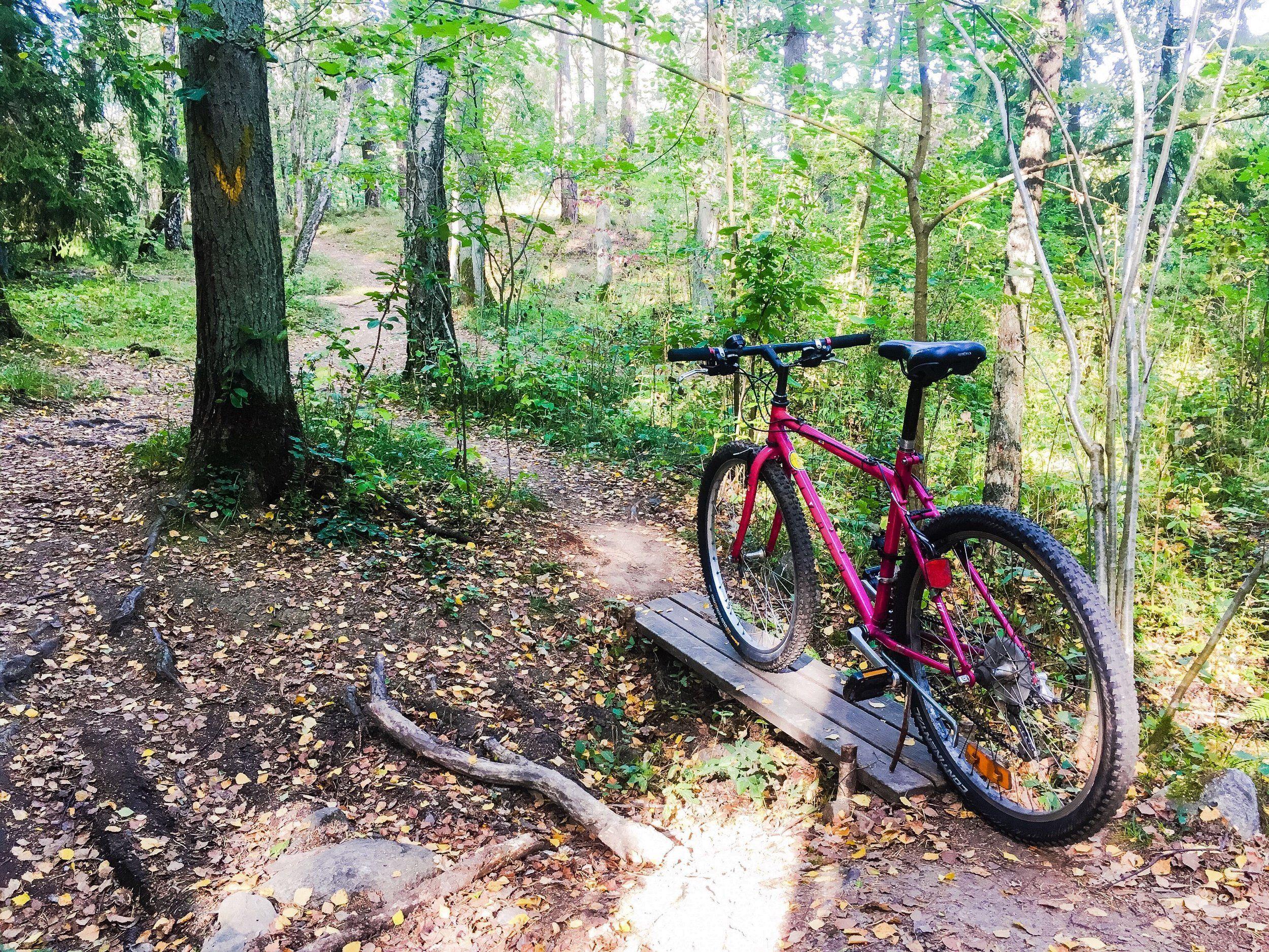 cykel-grimsta-20200922-2.jpg