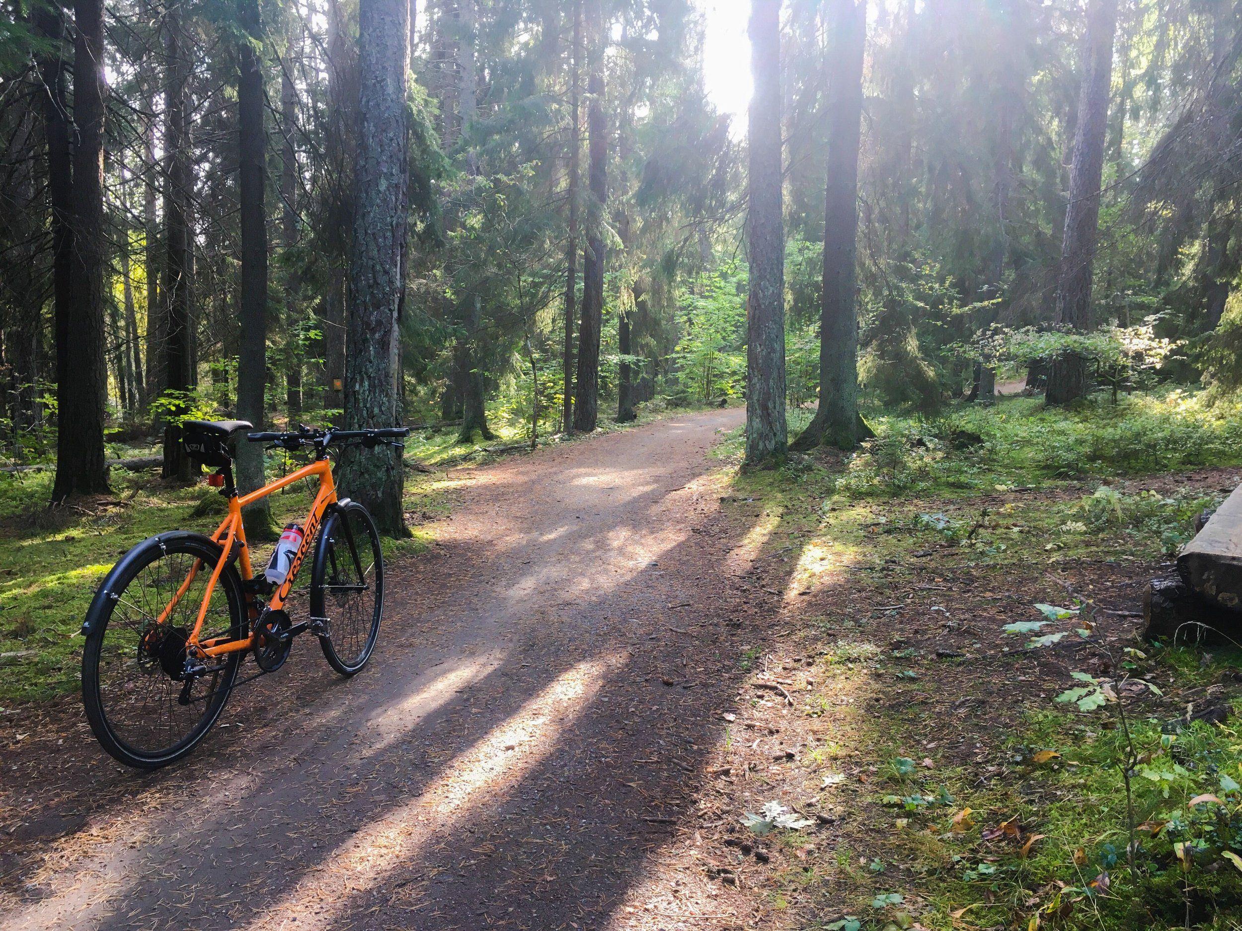 cykel-järvafältet-20200925.JPG