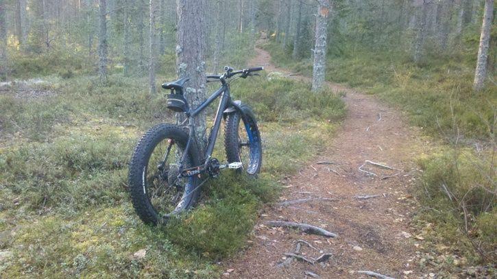 fatbike.gullvik.5.jpg
