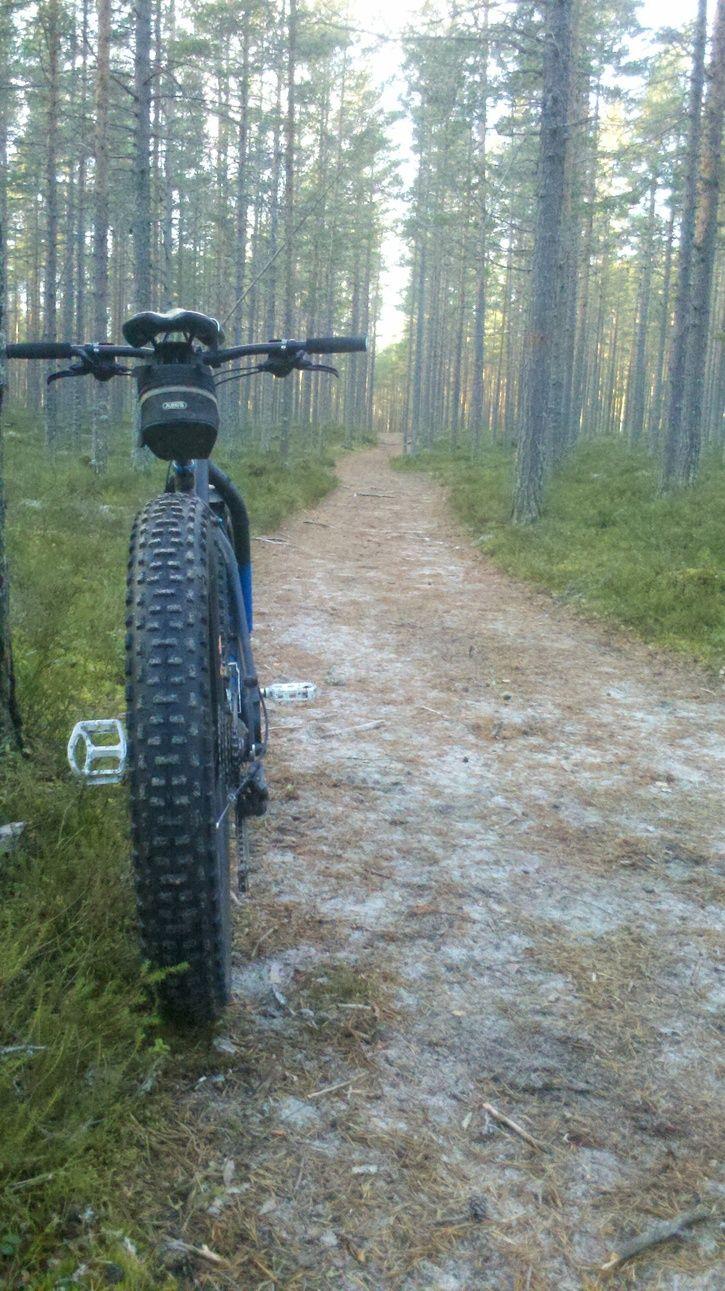 fatbike.gullvik.6.jpg