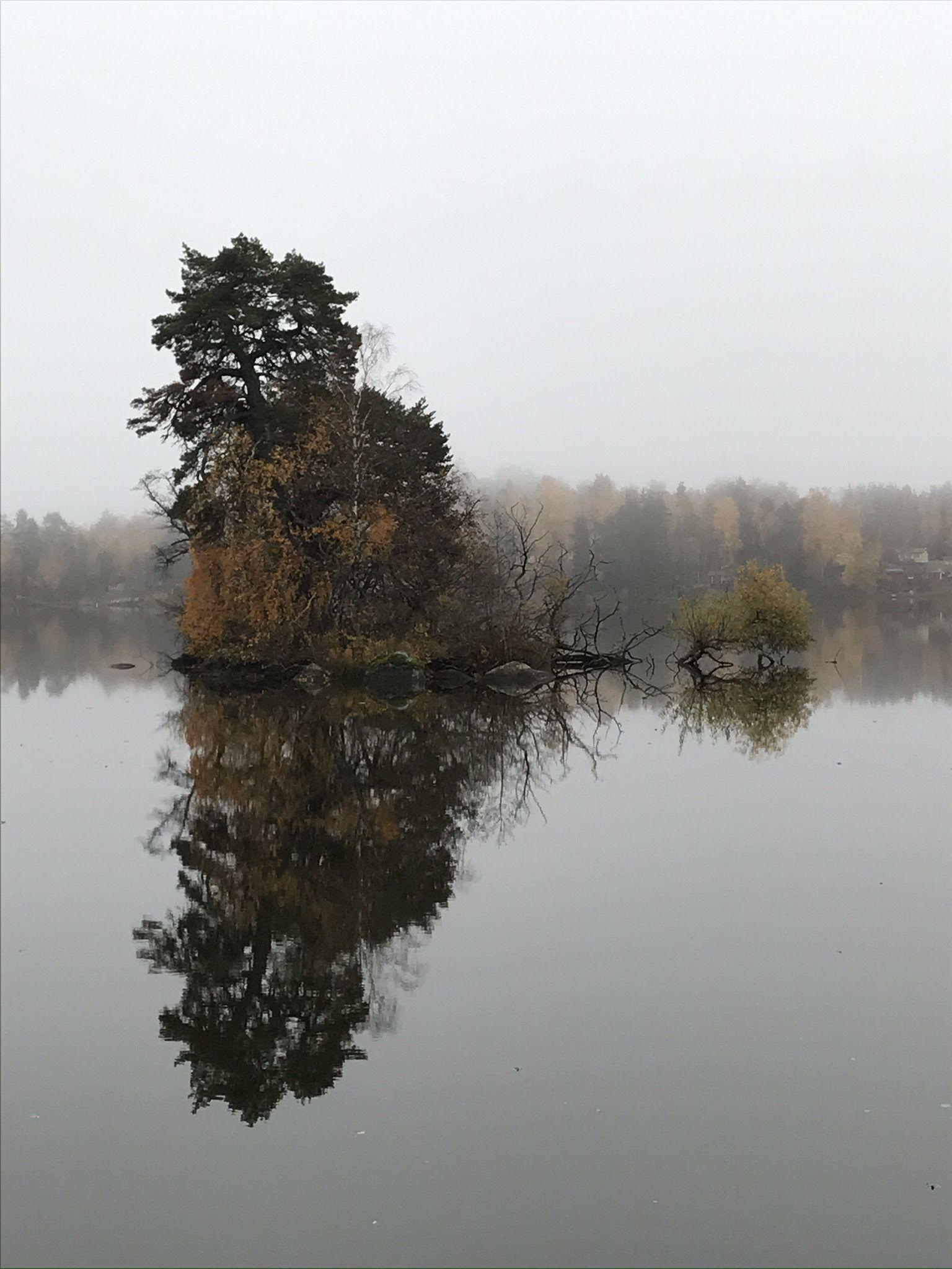 IMG_1465.JPEG