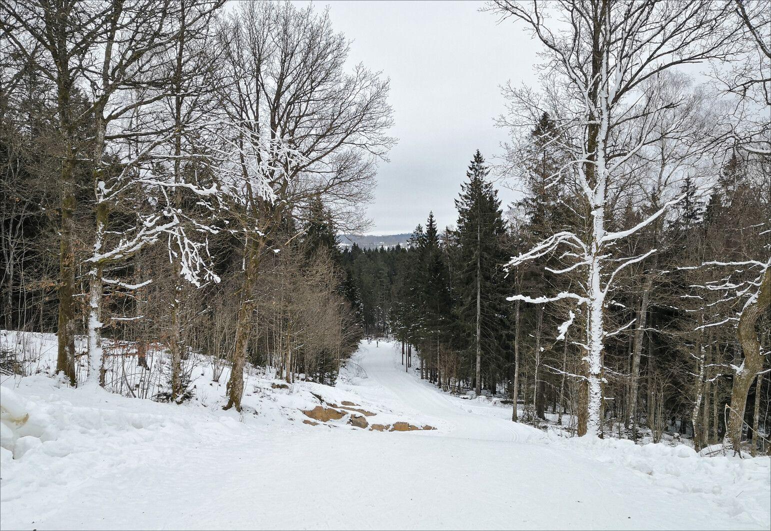 Längdskidor Borås (3).jpg