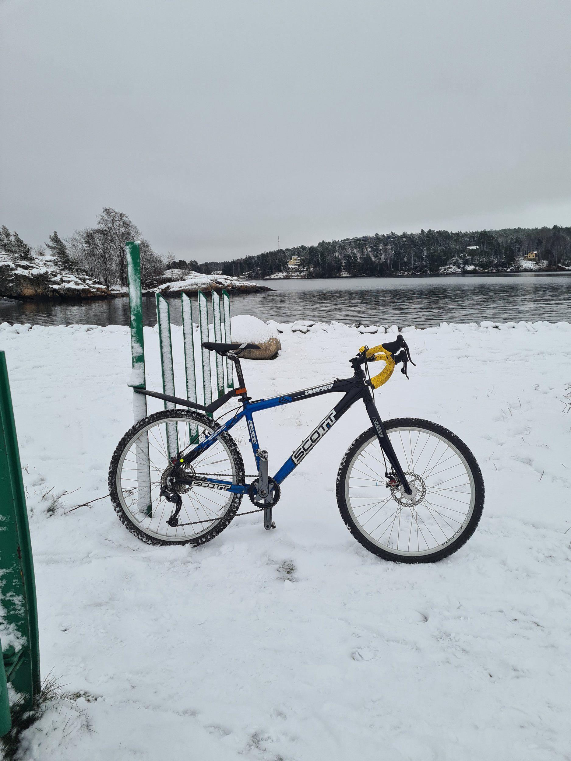 scottie_snö.jpg