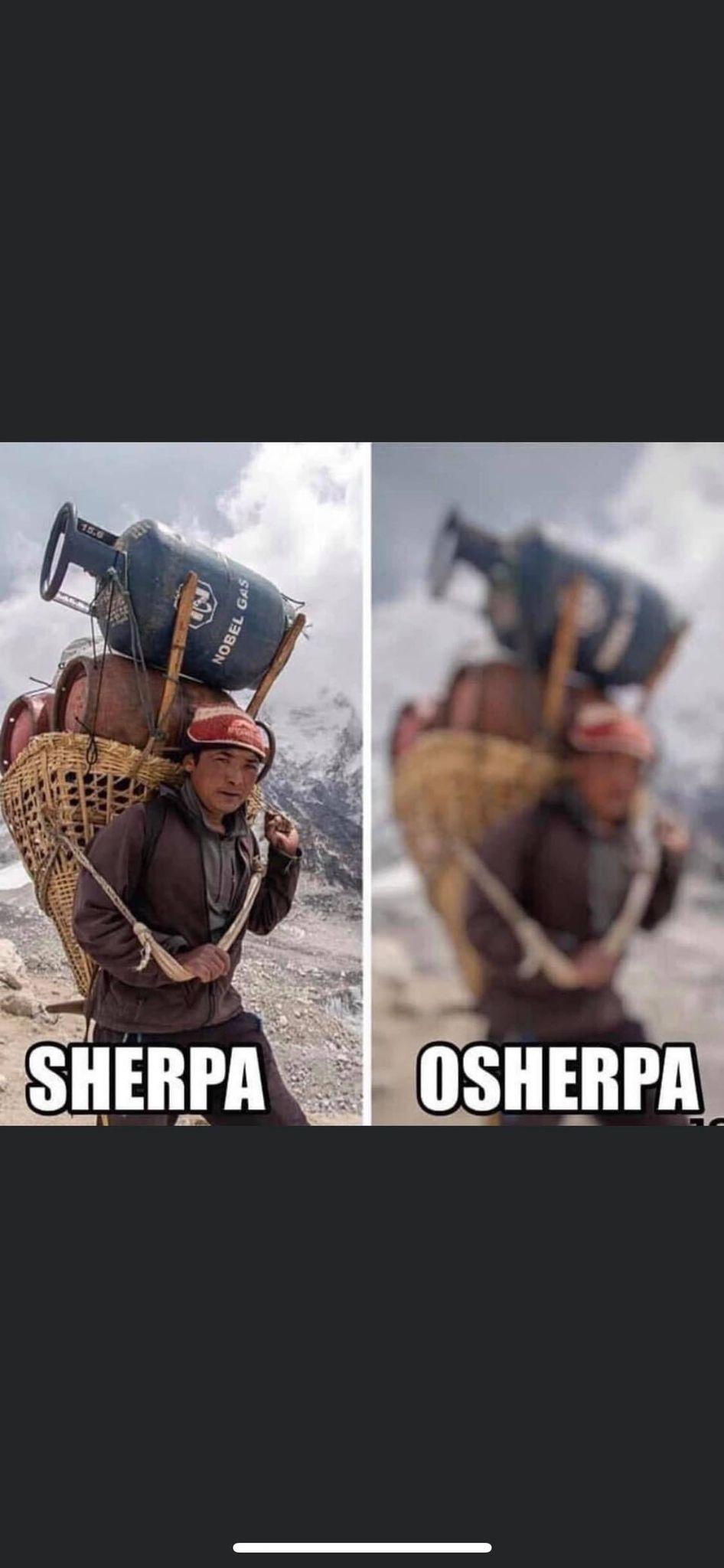 Sherpa.jpg