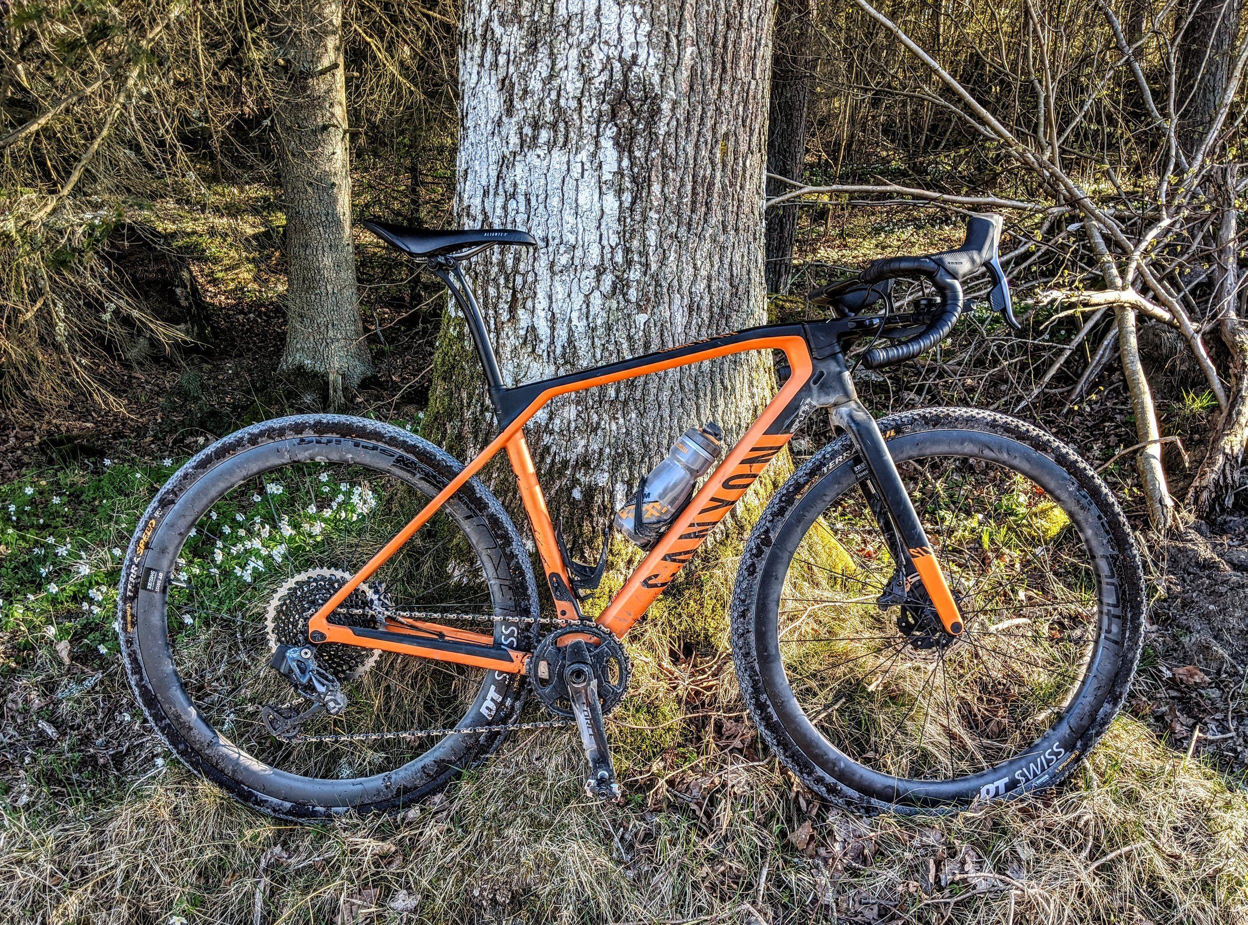 SLX forest orange.jpg
