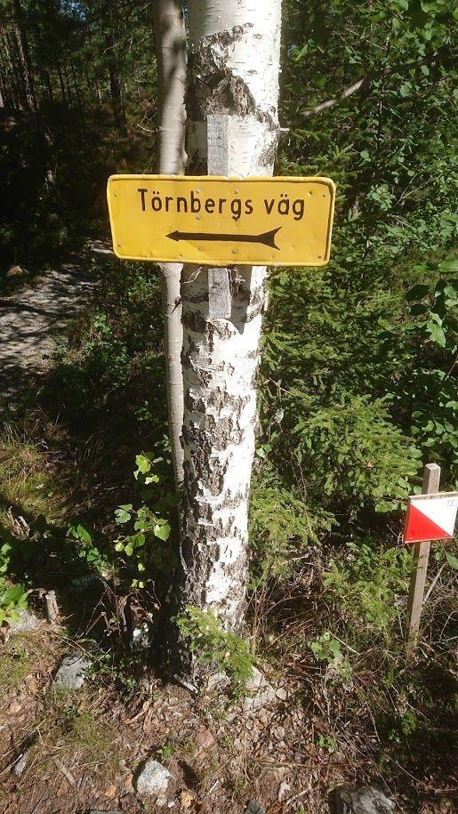 Törnbergs_väg.JPG
