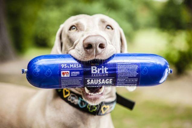 v_2208_2208_brit-premium-sausage.jpg