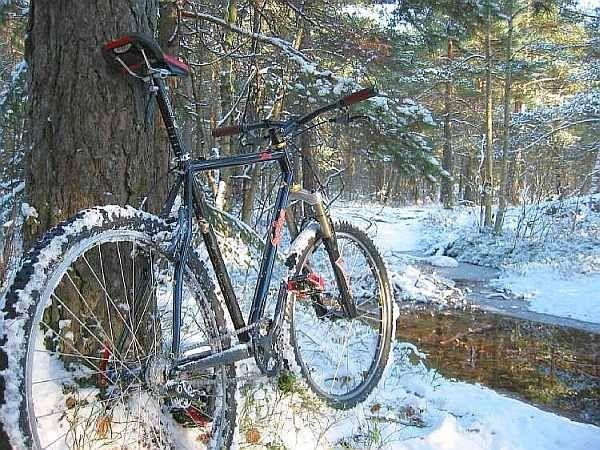 Vinter-04.jpg ht=450