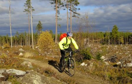Törnbergs stig norr om Falun är fantastisk rolig att cykla med 29-er.