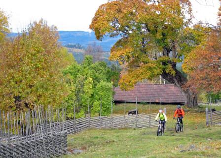Dalarna i höstskrud bjöd på trevlig cykling