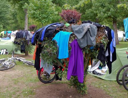 Ett typiskt franskt endurotorkträd.
