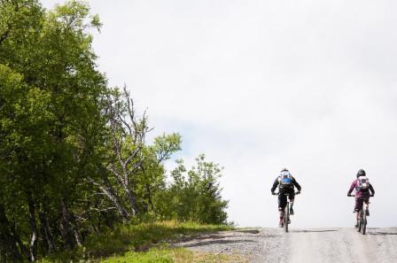 Andy White och Hanna Oleträ klättrar upp för mer av samma vara..