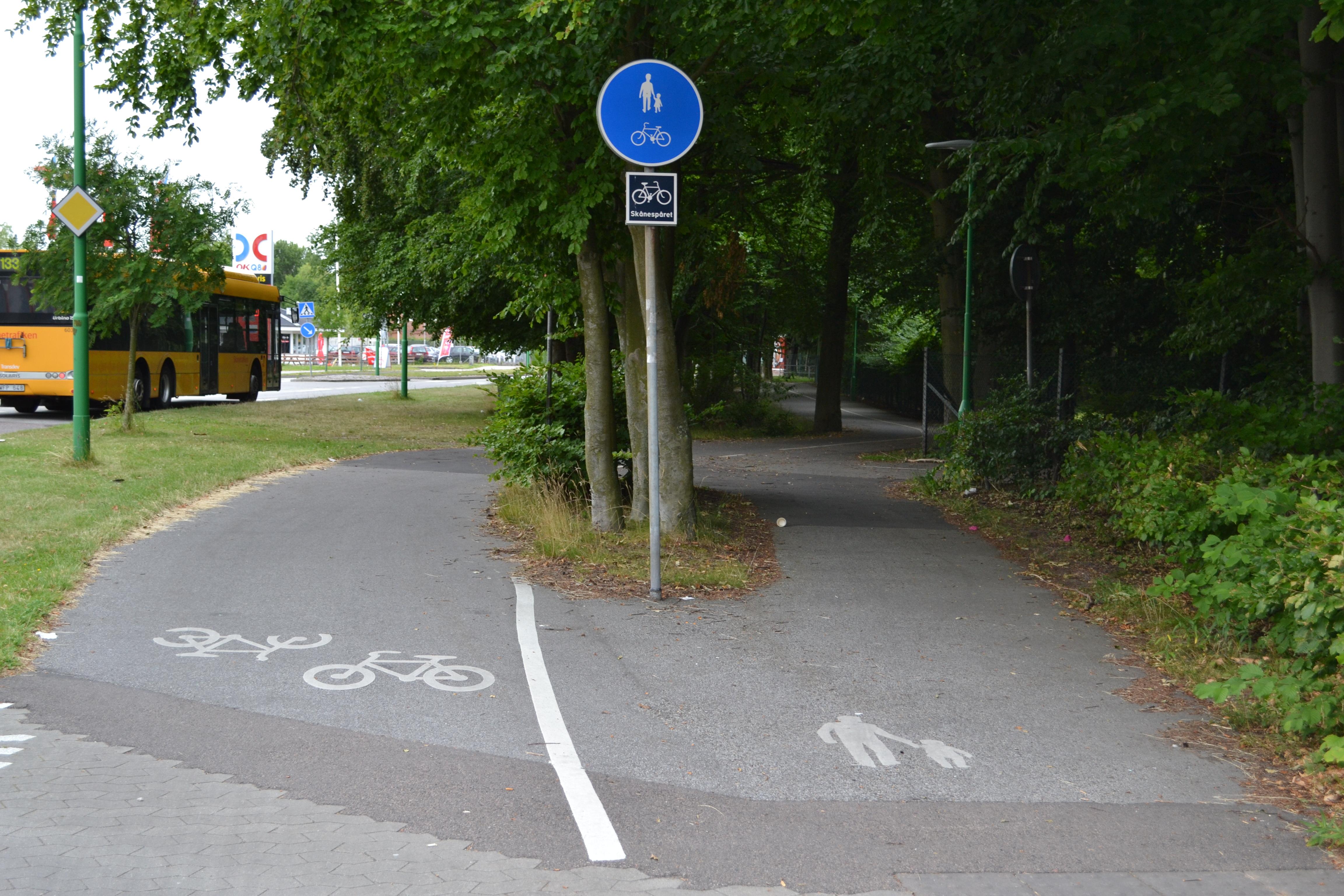 D6 Påbjuden gång- och cykelbana