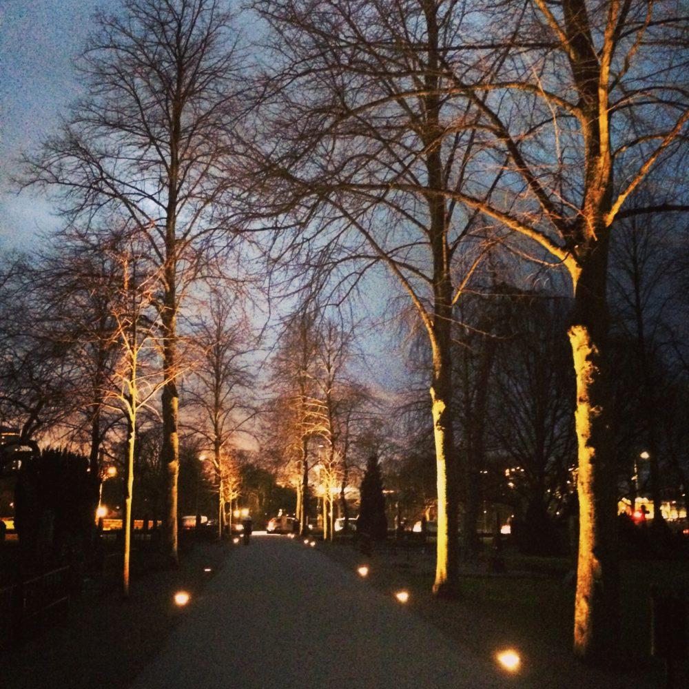 Ljussättningen på gamla kyrkogården i Malmö gör att platsen känns trygg även efter att mörkret fallit.
