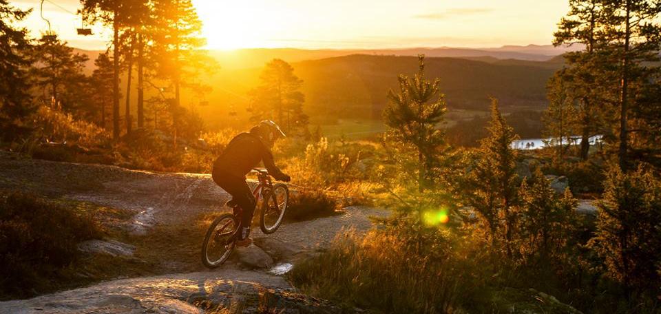 Jarvso-Bergscykel-Park.jpg